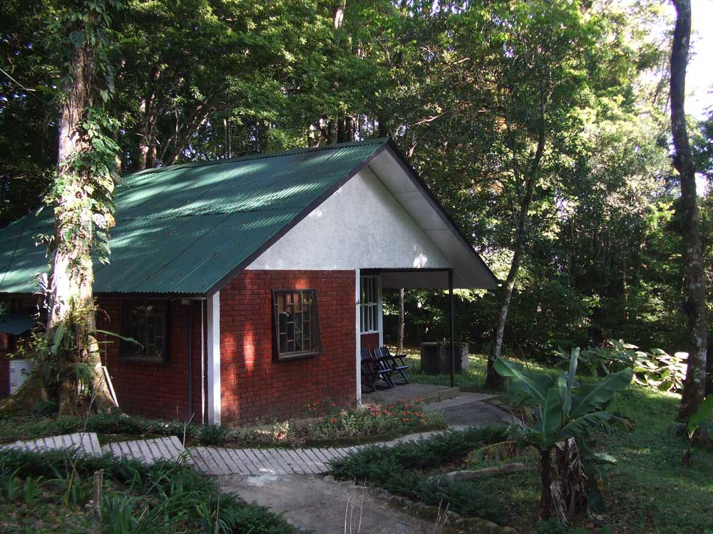 Two Bedroom Bungalows Selva Negra Ecolodge Lodging