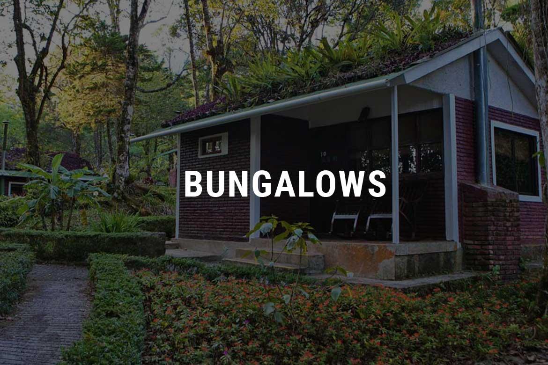 Bungalows Selva Negra Ecolodge