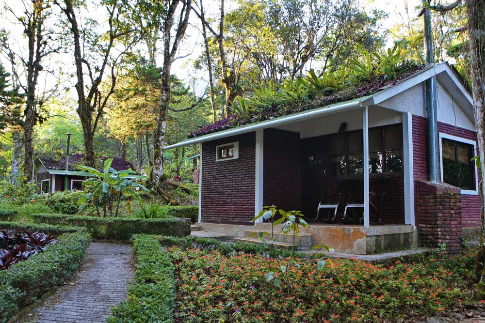One Bedroom Bungalows Selva Negra Ecolodge Lodging