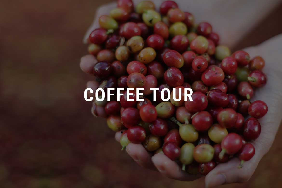 Coffee Tour Selva Negra Ecolodge