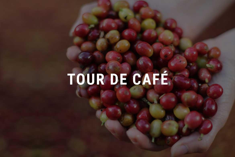 Tour de café - Selva Negra Ecolodge